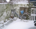 Irene-01graavejr-cykel