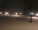 Finn02-sne
