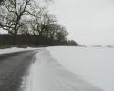 Finn04-sne