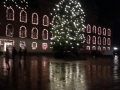 Juletræ Flakhaven kirsten